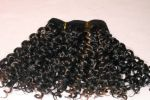 Long Spring Curls Black  with Blonde Highlights